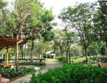 Công viên Hương Tràm quận 7, điểm nhấn xanh giữa lòng đô thị