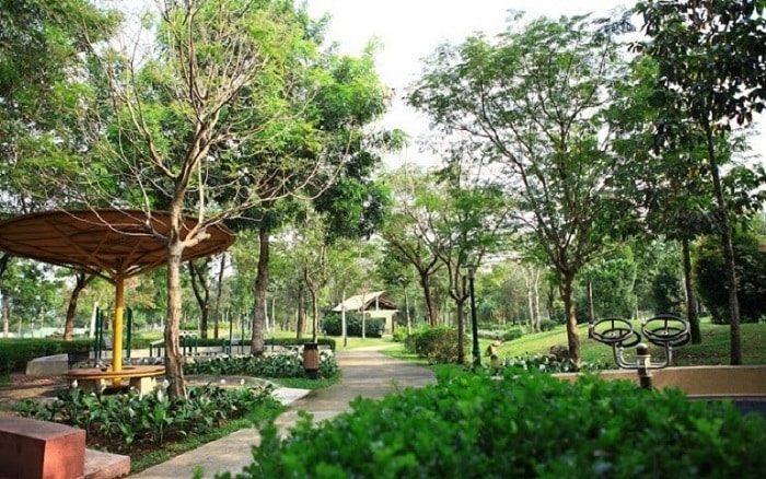 Công viên Hương Tràm quận 7 là lá phổi xanh của khu vực
