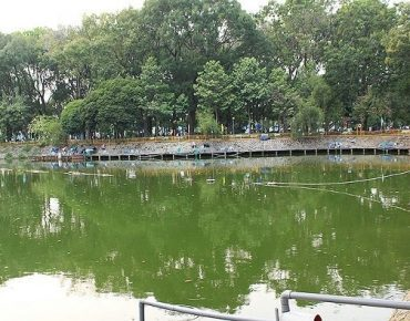 Công viên Hoàng Văn Thụ - điểm đến thư giãn quận Tân Bình