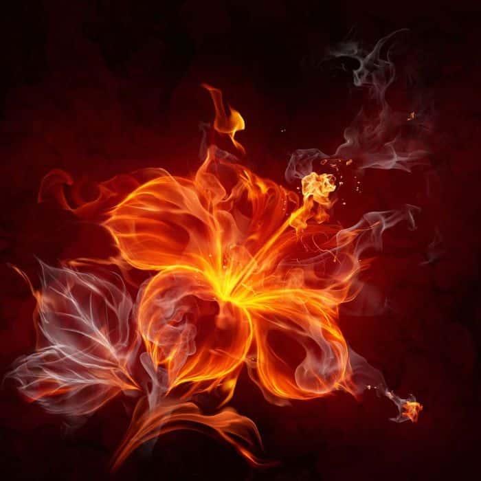 Hỏa tượng trưng cho sự sống, sức mạnh bất diệt và lòng dũng cảm